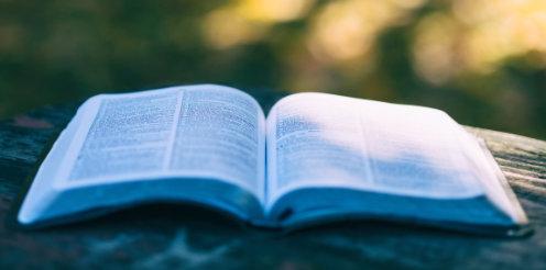 Lebenslanges Lernen: Was steckt hinter dem Konzept?